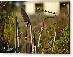 Gardening Tools Acrylic Print by John Greim