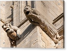 Acrylic Print featuring the photograph Gargoyles On Ely Cathedral by Andrew  Michael