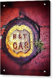 Gas And Grass Acrylic Print