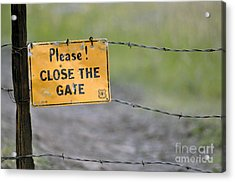 Gate Keeper Acrylic Print by Juls Adams