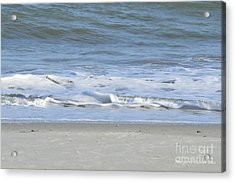 Gentle Tides Acrylic Print by Margaret Palmer