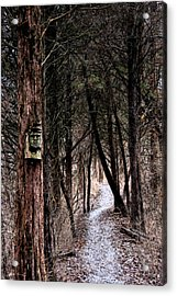 Gently Into The Forest My Friend Acrylic Print