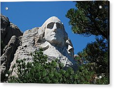 George Washington Face  Acrylic Print by Dany Lison