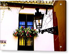 Acrylic Print featuring the photograph Geraniums And Light by Rick Bragan