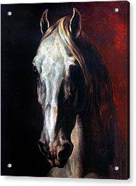 Gericault: White Horse Acrylic Print