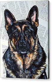 German Shepherd Headshot Acrylic Print by Christas Designs