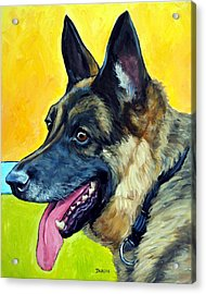 German Shepherd Profile On Gold Acrylic Print by Dottie Dracos