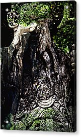 Ghillie Dhu Acrylic Print by Nafets Nuarb