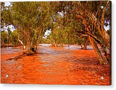 Ghost Gums In The Todd Acrylic Print