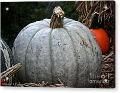 Ghost Pumpkin Acrylic Print by Susan Herber
