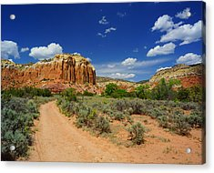 Ghost Ranch Box Canyon Trail Vista   Acrylic Print