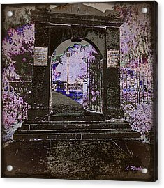 Ghostly Garden Acrylic Print by Leslie Revels Andrews