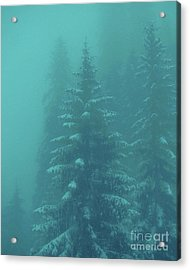 Ghostly Trees In Oils Acrylic Print by Al Bourassa