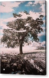 Giant Tree In City Acrylic Print by Hag
