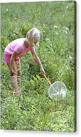 Girl Collects Insects In A Meadow Acrylic Print by Ted Kinsman