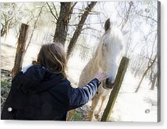 Girl Stroking Camargue Horse At Fence Acrylic Print by Sami Sarkis