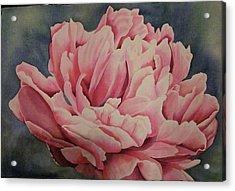giving YOU up Acrylic Print by Teresa Beyer