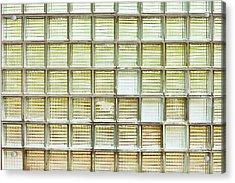 Glass Brick Wall Acrylic Print by Tom Gowanlock