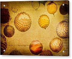 Acrylic Print featuring the photograph Glass Ornaments by James Bethanis