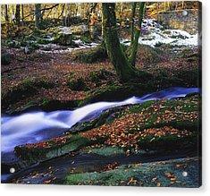 Glenmacnass Waterfall, Co Wicklow Acrylic Print by The Irish Image Collection