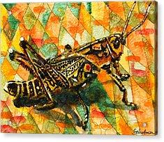 Glorious Grasshopper Acrylic Print by Miriam  Schulman