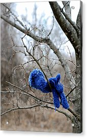 Glove Lost Acrylic Print by Lisa Phillips