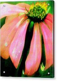Glow Acrylic Print by Amity Traylor