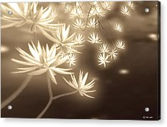 Glowing Flower Fractals Acrylic Print
