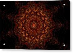 Glowing Within 3 Acrylic Print by Rhonda Barrett