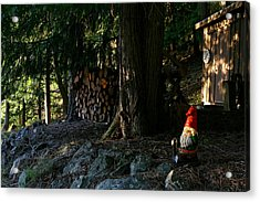 Gnome And The Woodpile Acrylic Print