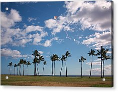 Acrylic Print featuring the photograph Go Fly A Kite by Craig Wood