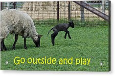 Go Outside And Play Acrylic Print by LeeAnn McLaneGoetz McLaneGoetzStudioLLCcom