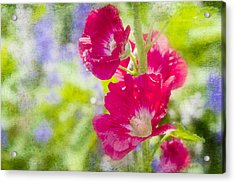 Go Paint In The Garden Acrylic Print by Toni Hopper