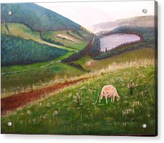 Goat On Welsh Mountain Acrylic Print by Malcolm Clark