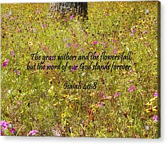 Gods Word Stands Forever Acrylic Print by Sheri McLeroy