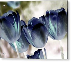 Going Blue Acrylic Print