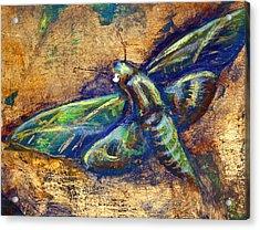 Gold Moth Acrylic Print