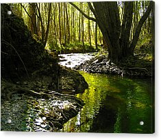 Gold River Acrylic Print by Guadalupe Nicole Barrionuevo