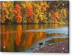 Acrylic Print featuring the photograph Gold Waters by Tyra  OBryant