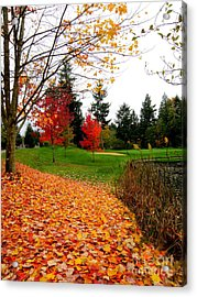 Golden Autumn  2 Acrylic Print by Tanya  Searcy