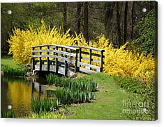 Golden Days Of Spring Acrylic Print