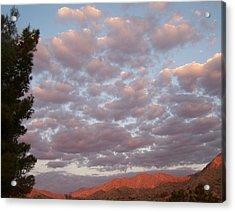Acrylic Print featuring the photograph Golden Desert Sky by Christine Drake