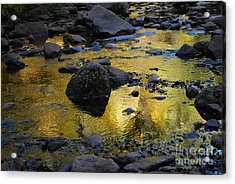 Golden Fall Reflection Acrylic Print by Heather Kirk