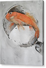Golden Fish - One Wish Acrylic Print by Ema Dolinar Lovsin