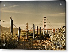 Golden Gate Bridge - 3 Acrylic Print