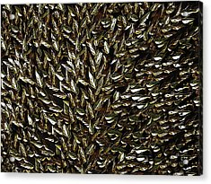 Golden Leaf Acrylic Print by David Dehner