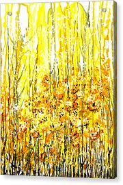 Golden Meadow Acrylic Print by Elaine Hodges
