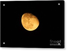 Acrylic Print featuring the photograph Golden Moon by Tyra  OBryant