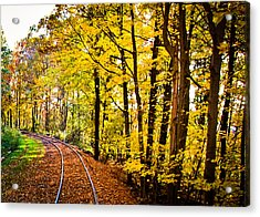 Acrylic Print featuring the photograph Golden Rails by Sara Frank