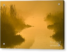 Golden Riverside Acrylic Print